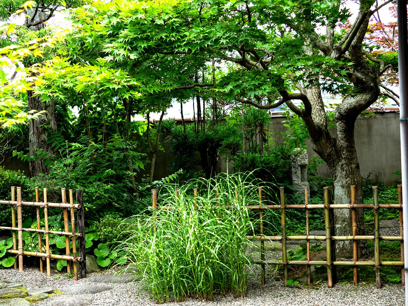 米子市T邸  わびさびを楽しむ純和風の庭