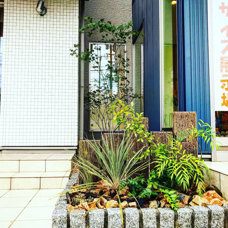松江市  桧家住宅植栽工事