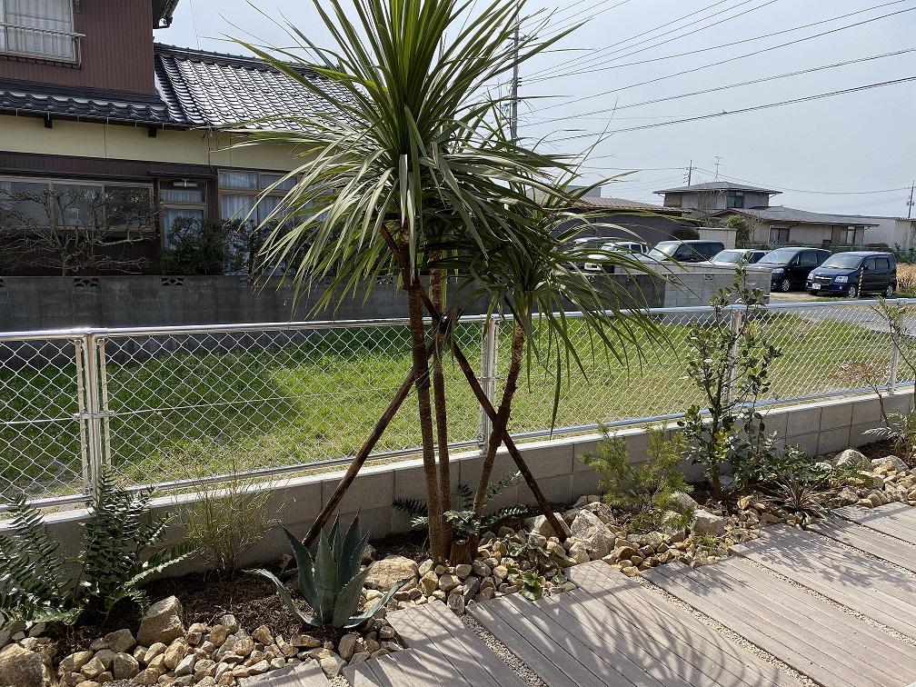 狭いスペースでも樹冠が上にあるものを植えれば、 動線を妨げる事なく、演出できます。