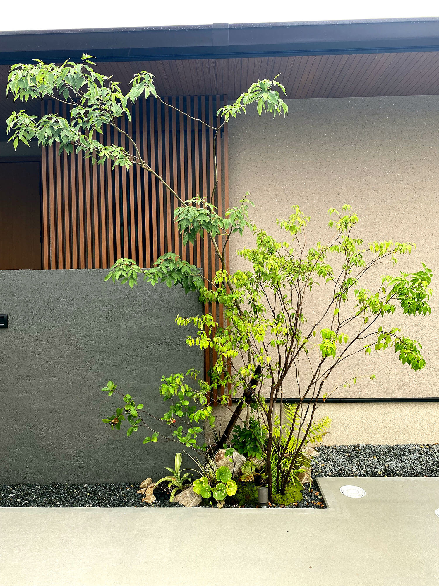 浮き階段のアプローチ横も植栽。